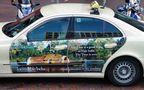 Taxi nach Indien... von Günter Walther