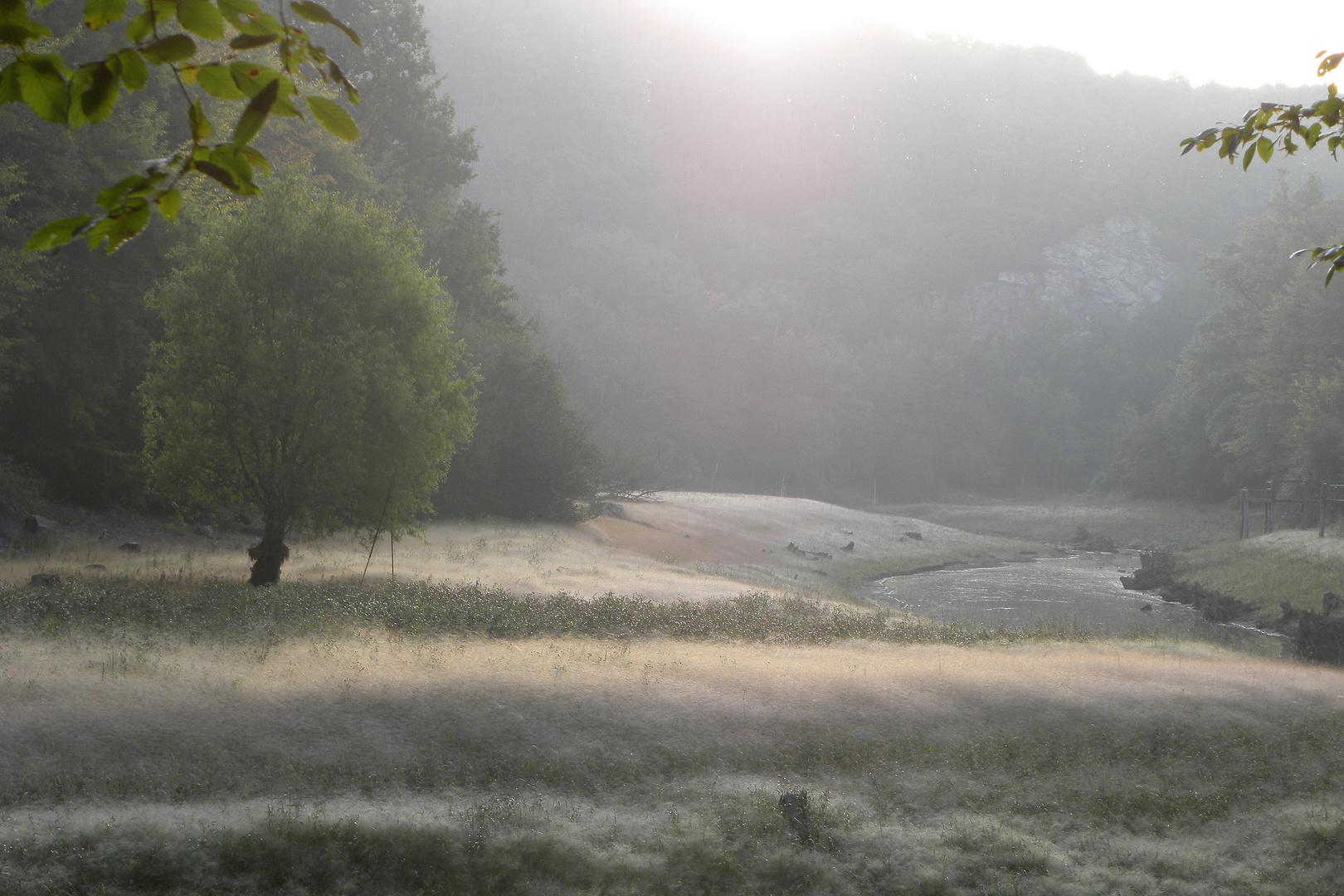 Te souviens-tu notre rivière ?