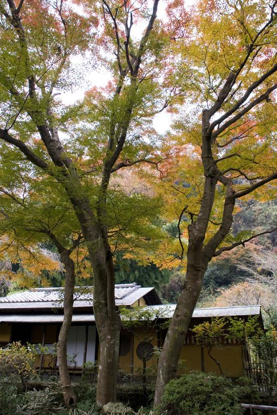 Tea ceremony house