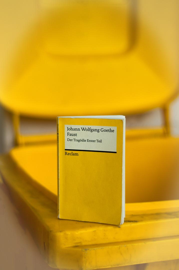 """Team im Fokus - """"gelb"""""""