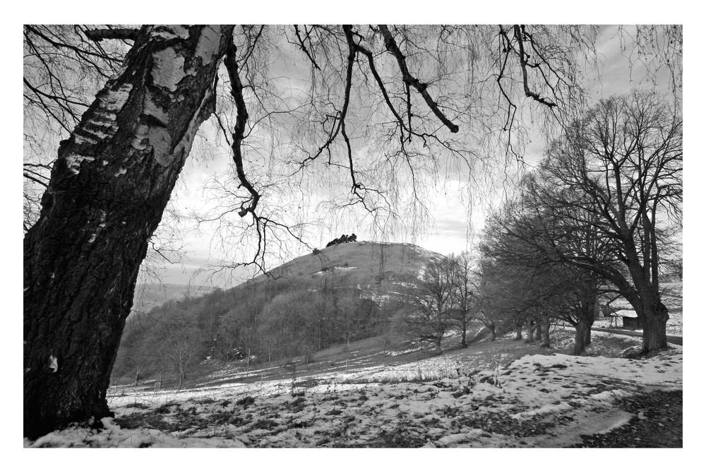 Teck oberhalb von Owen im November 2007 (1)