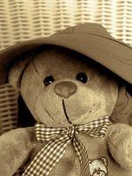 Teddy **