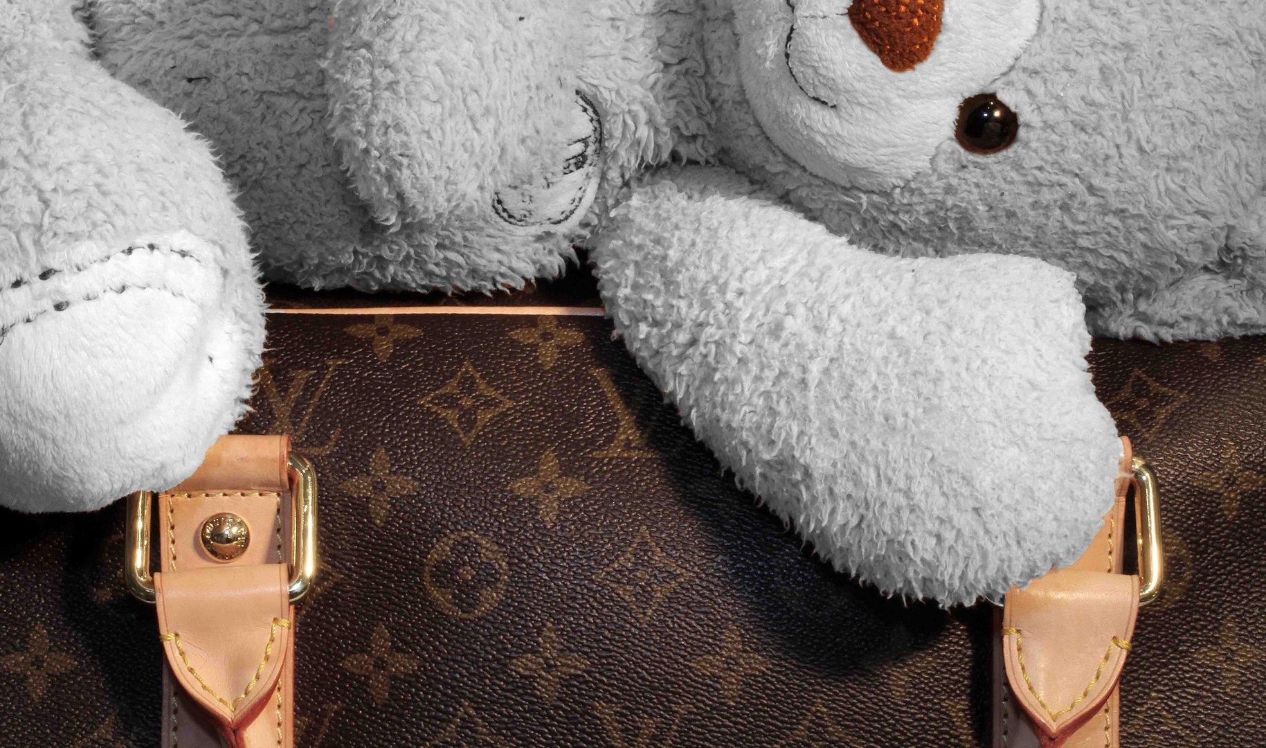 Teddy auf Reisen