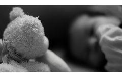 Teddy auf Schmusekurs