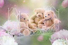 Teddys im Bett