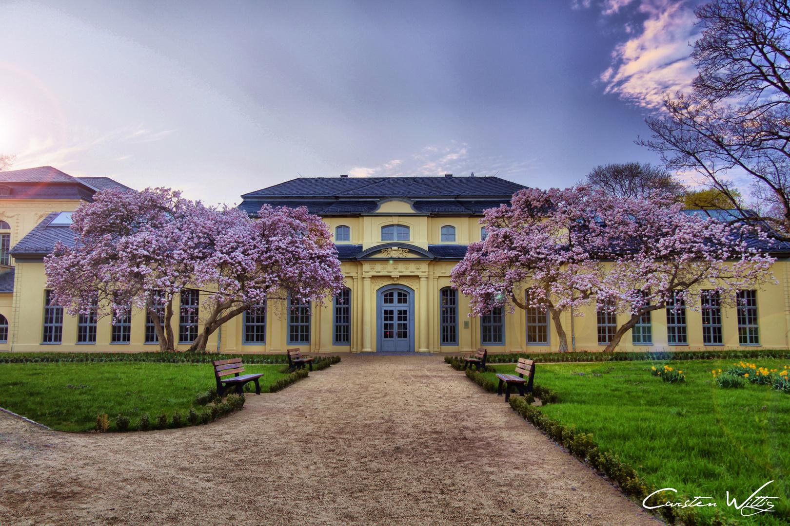 Teehaus - Altenburg