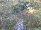 Teich auf dem ehemaliegen Gelände der Zeche Auguste Victoria 4/5 in Marl-Drewer