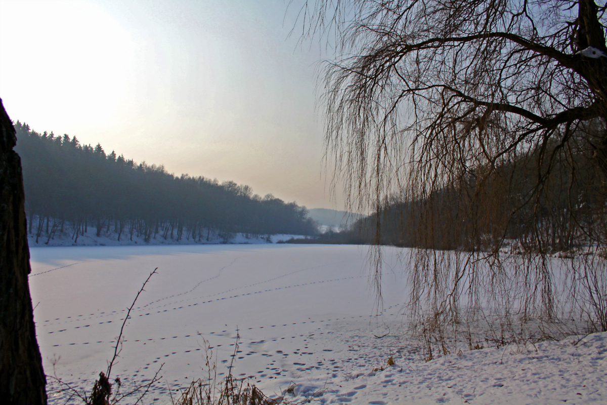 Teich bei Möllendorf