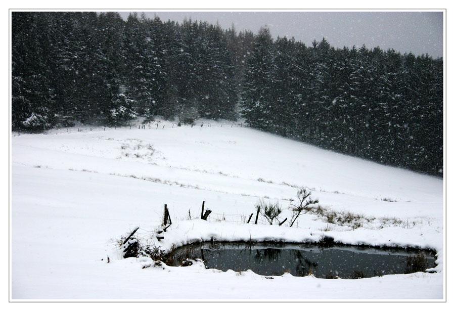 Teich im Schnee