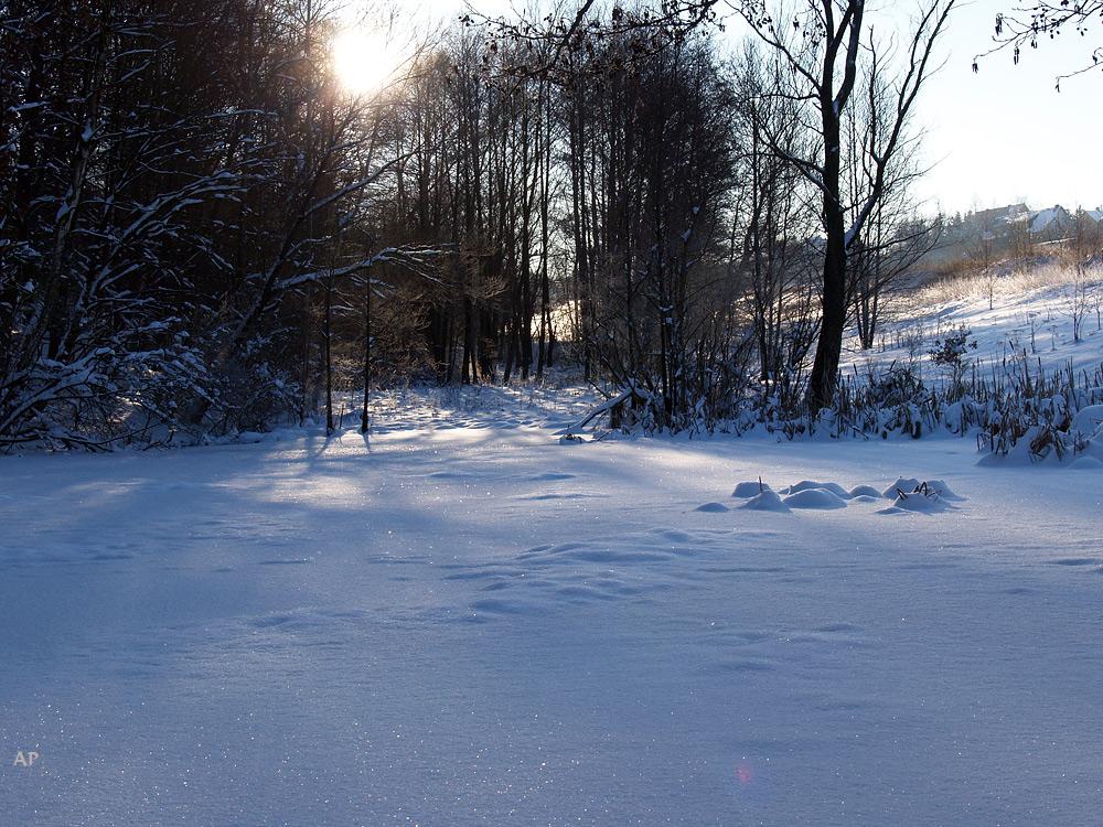 Teich im winter top gefrorener teich im winter with teich for Teich winter