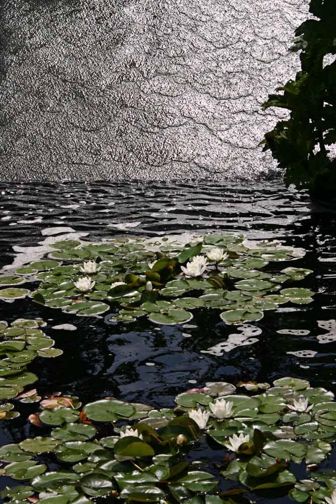 Teich in Kew Gardens