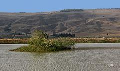 Teich u.Berg in der Galil Landschaft