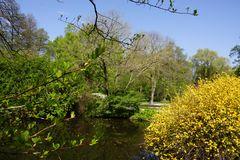 Teiche im Tiergarten