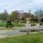 Teichspiegelung im Japanischer Garten....