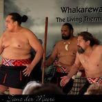 Teil der Maori-Kultur