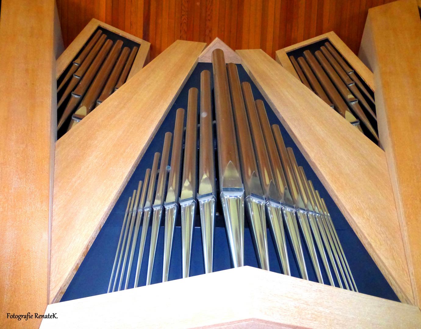 Teil des Prospektes der Orgel von Berlin-Hohenschönhausen