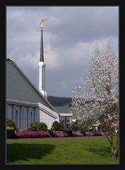 Tempel der Mormonen