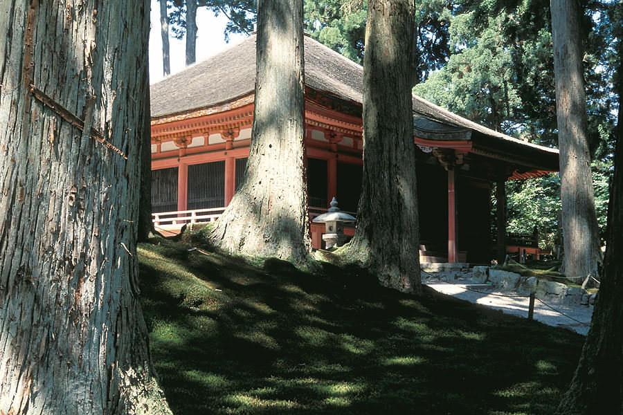 Tempel im Wald - Enryaku-ji (1)