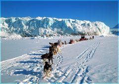 Tempelfjorden- Spitzbergen