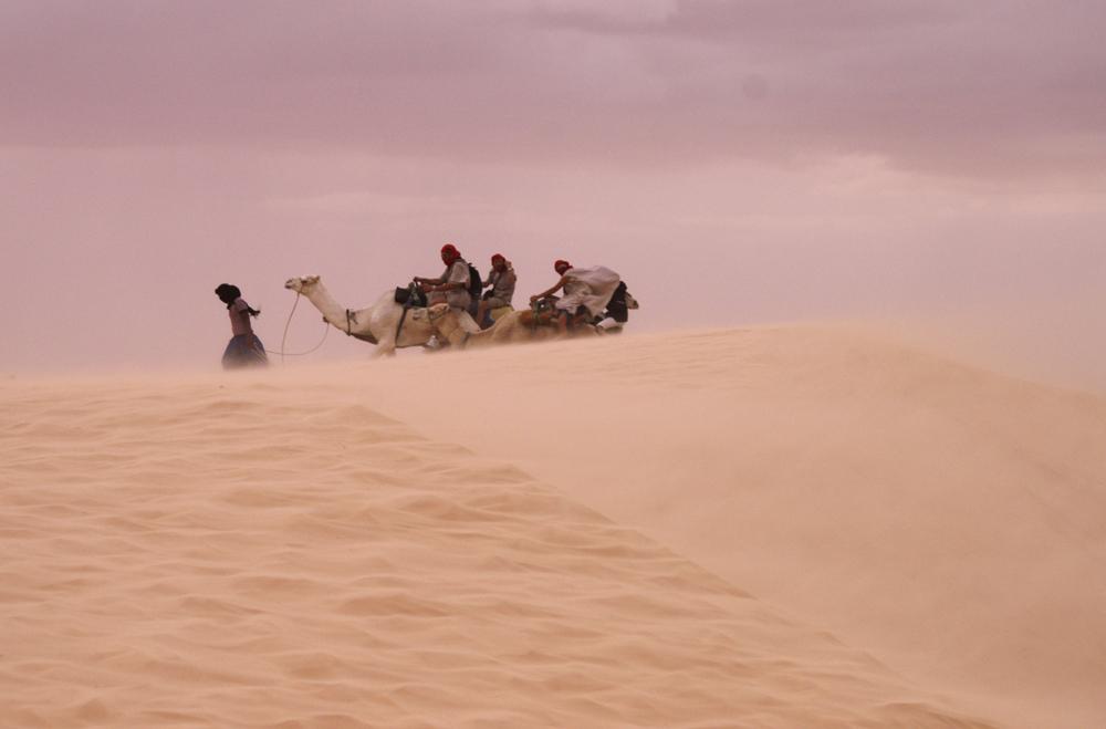 Tempesta di sabbia nel sahara