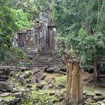 Temple in the jungle