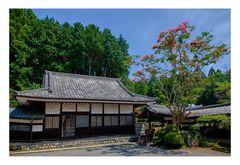 Temple-XI