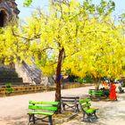 templo colorido en Chiang Mai