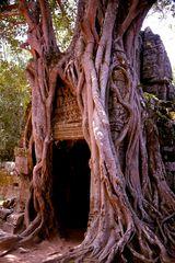 Templo de Ta Som