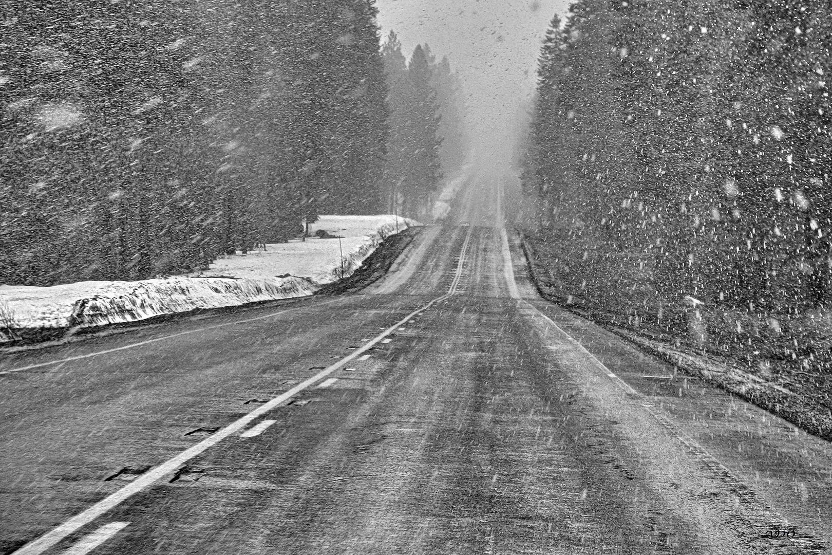Tempête de Neige en Oregon