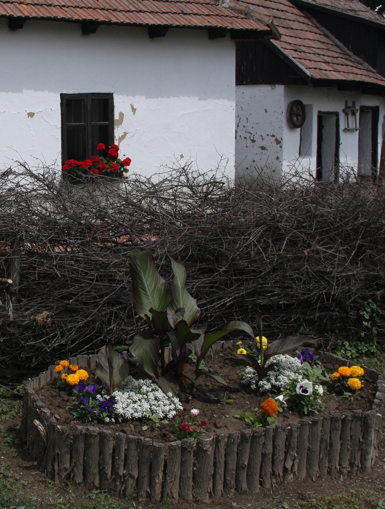 Ten moments in east Hungary: An old farmer's house