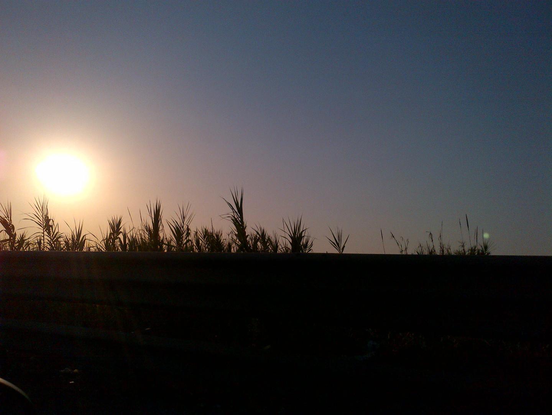 tendere al sole