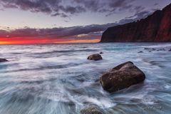 Tenerife Red