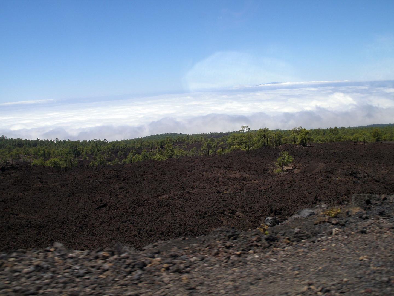 Teneriffa - El Teide - 03