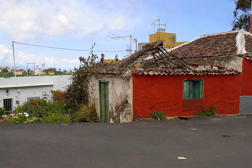 "Teneriffa/ Tenerife, Tacoronte: Tote Katze vor ""totem"" Haus/ Gato muerto delante la ruína"
