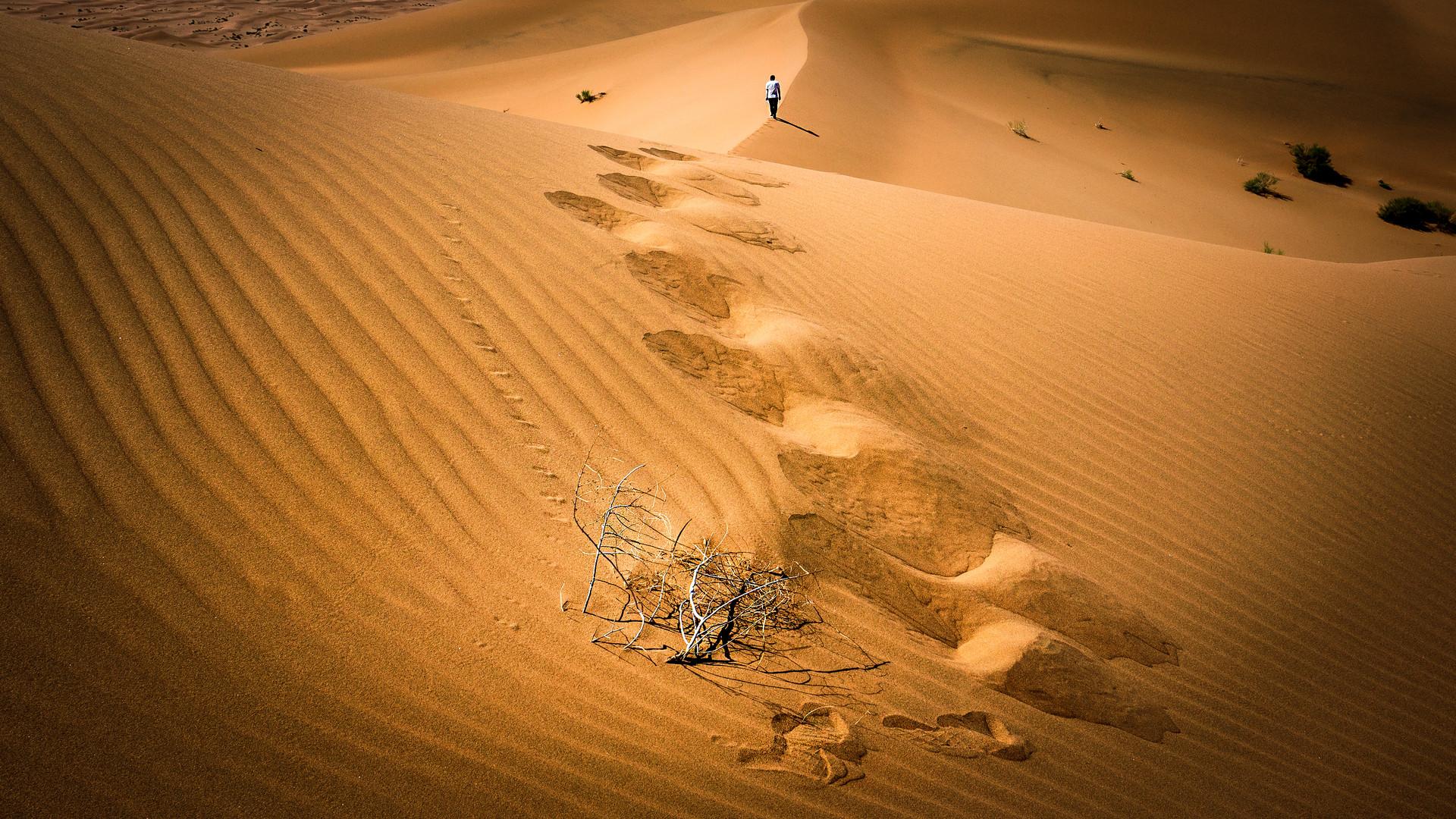 Tengger Desert  -  China (2021)