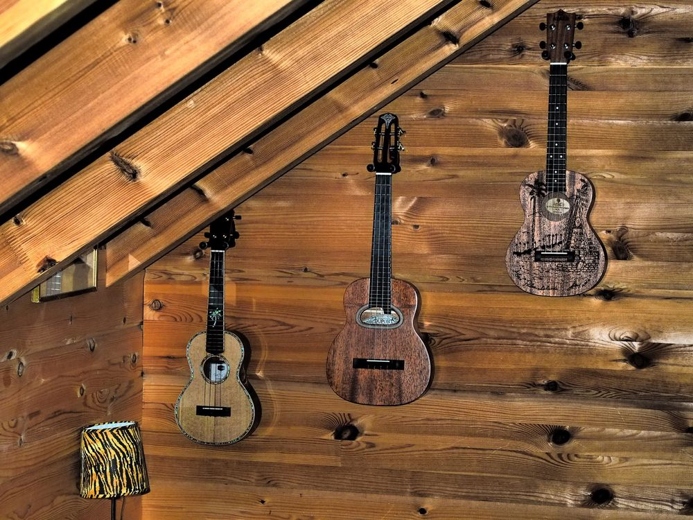 tenor ukuleles: maestro & dupont & kokio
