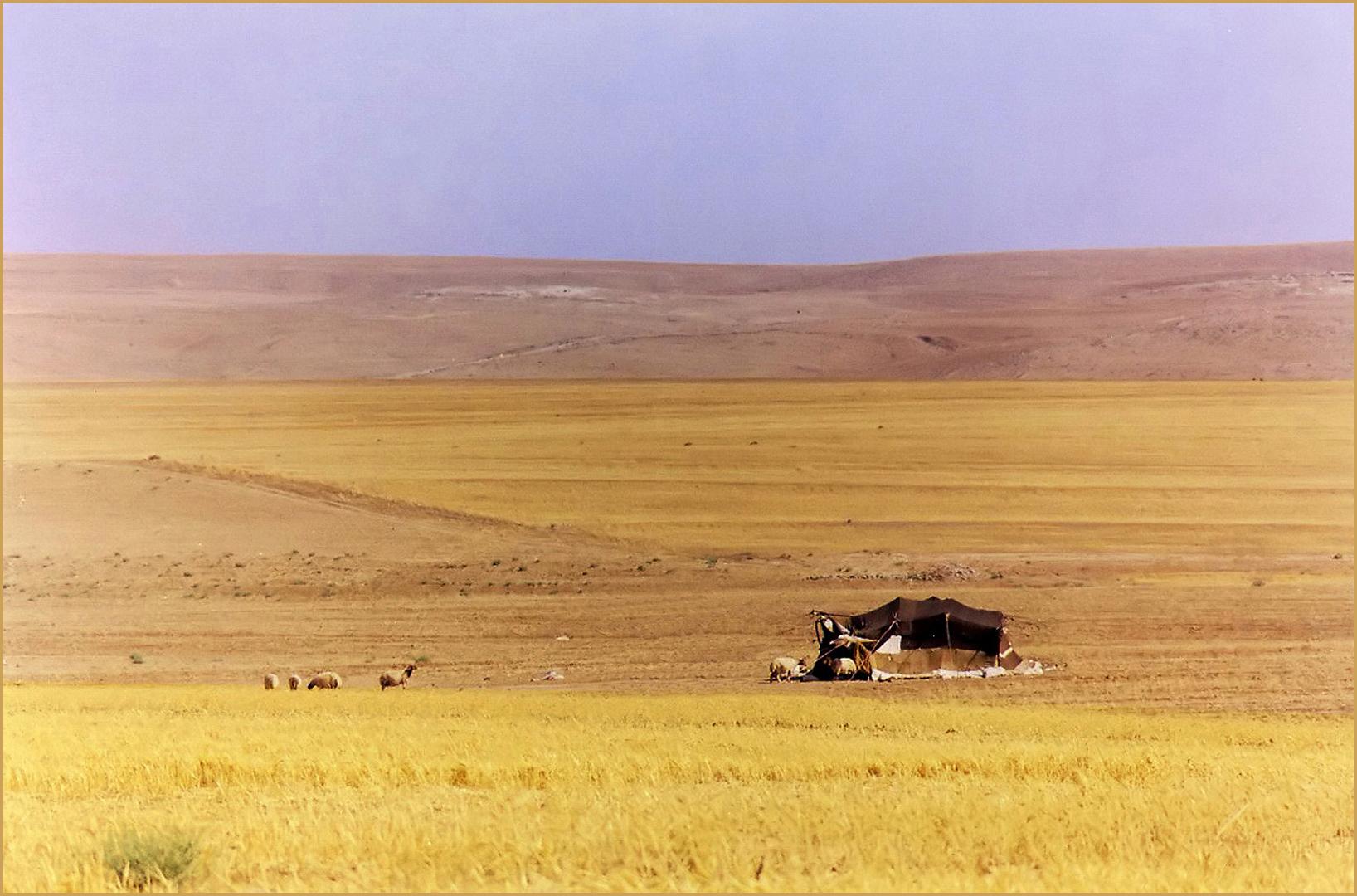 Tente de nomades sur les hauts plateaux