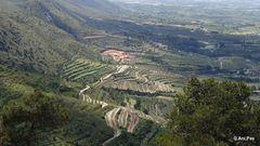 Terassenlandschaft zu Füßen des Benicadell - Spanien
