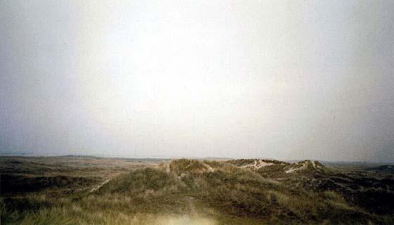 Terchelling Hügeln #1