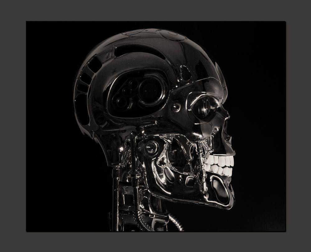 *Terminator*
