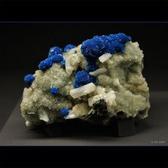terra mineralia 3
