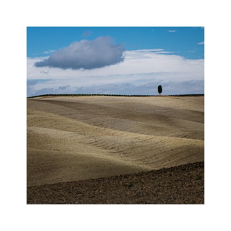 Terra Toscana VIII