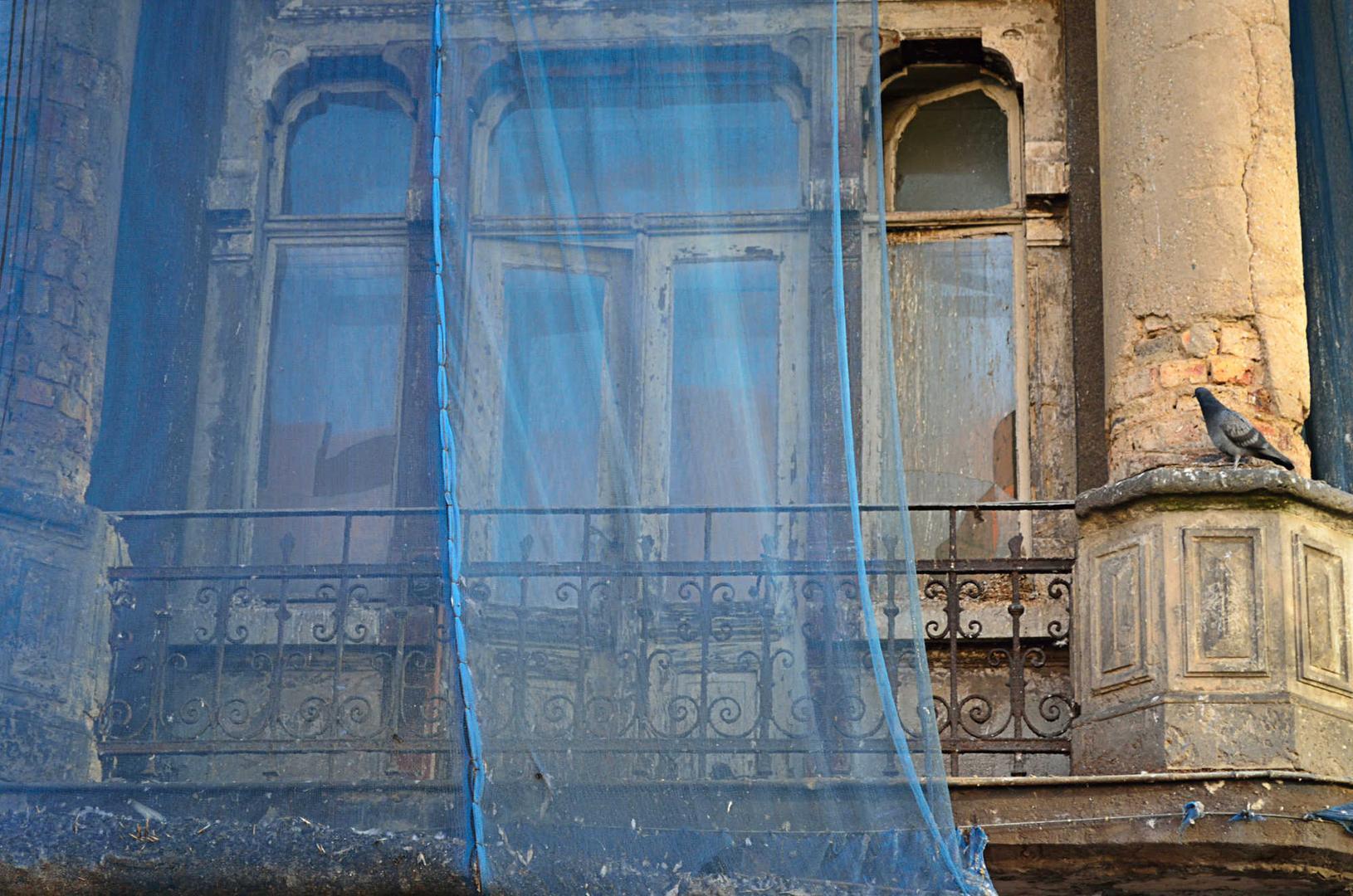 terrace memory in blue