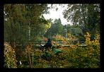 Terrasse mit Ausblick 15