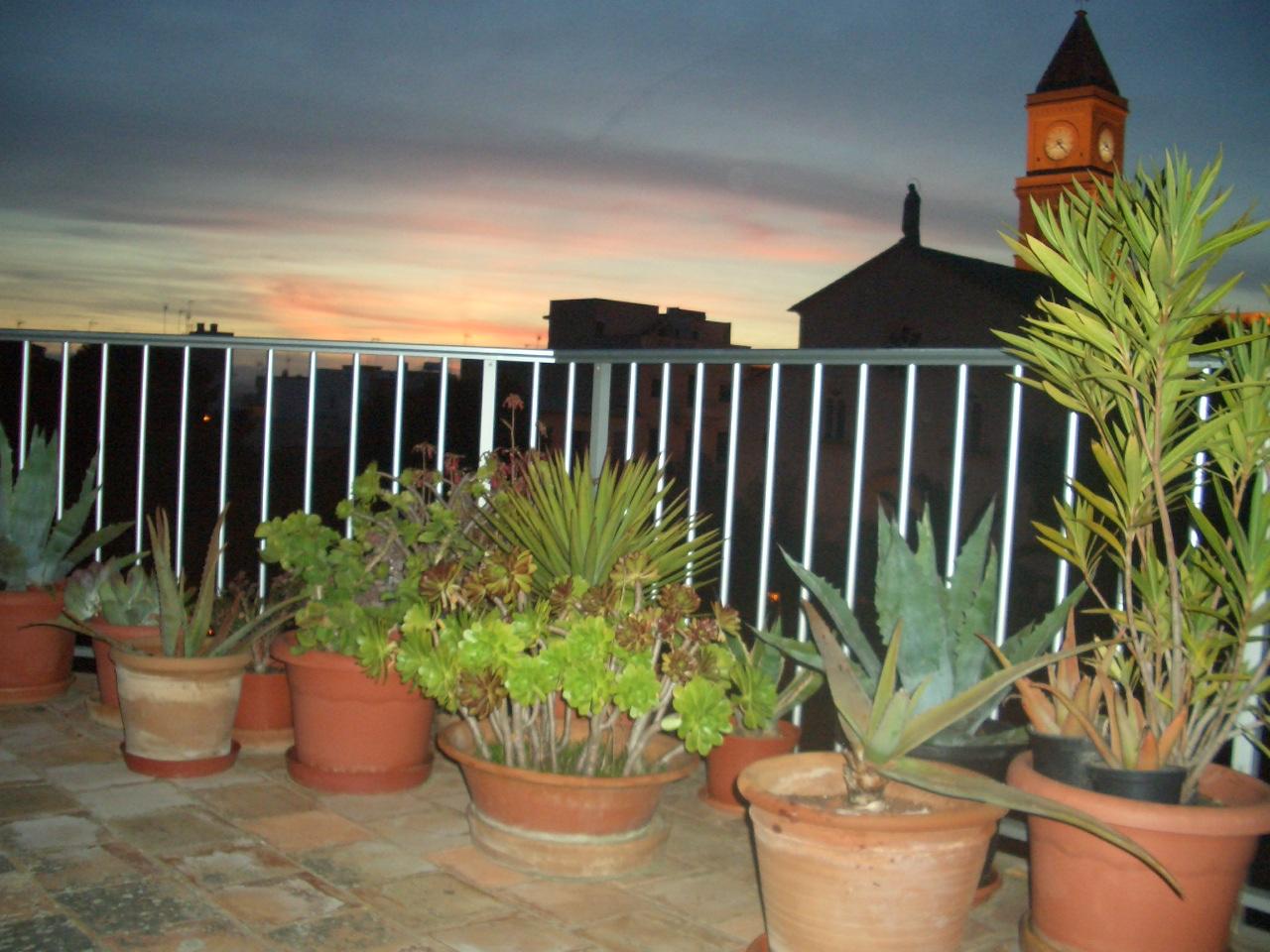 Terrasse mit pflanzen foto bild landschaft for Pflanzen terrasse