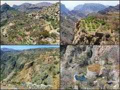 Terrassendörfer des Jabal Akhdar