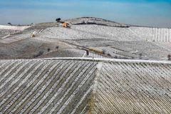 Terre da vino - sottozero (2) ridotta