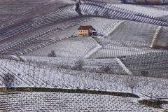 Terre da vino - sottozero
