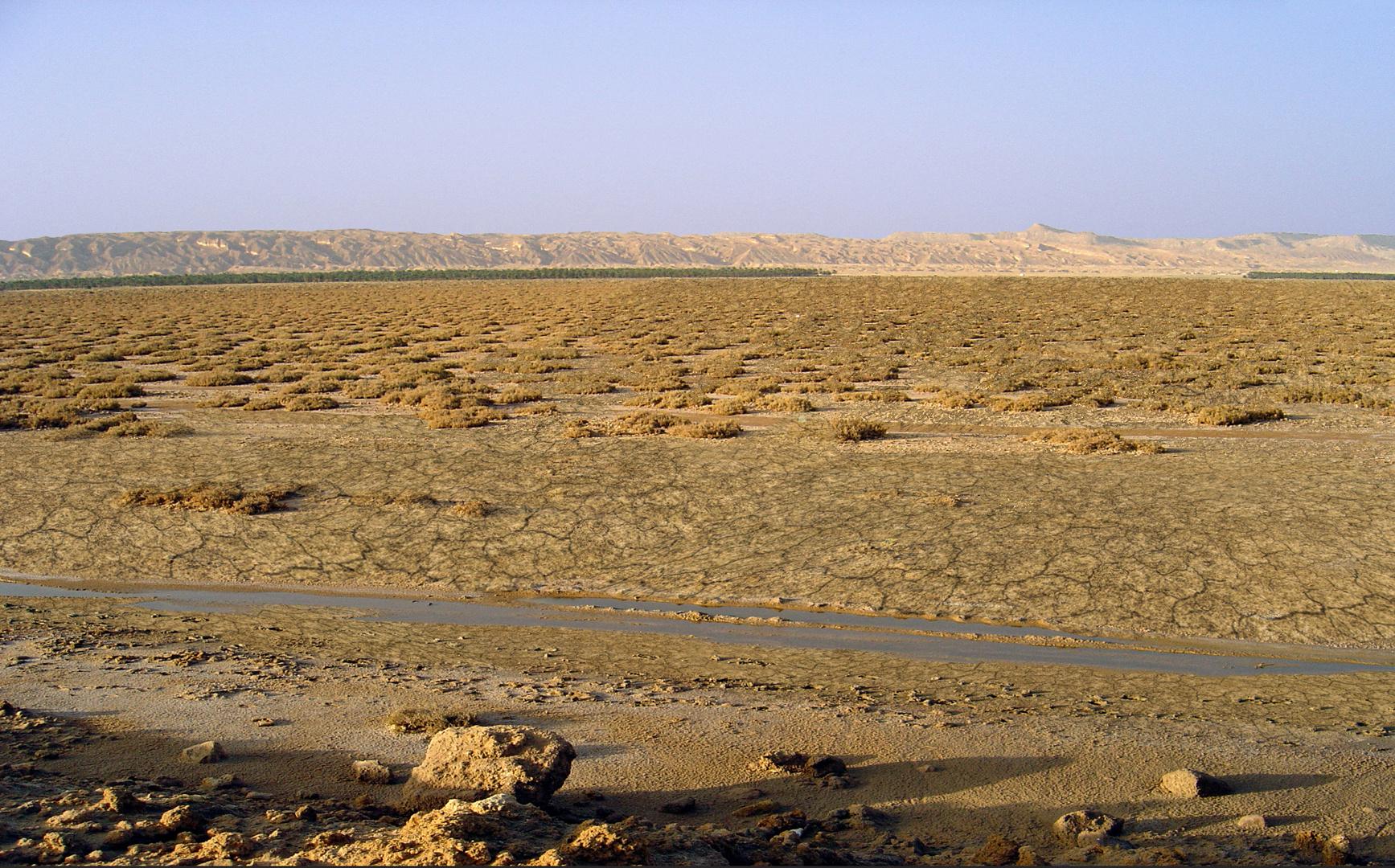 Terre de sel sur lac salé