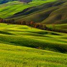 Terre de Siena....